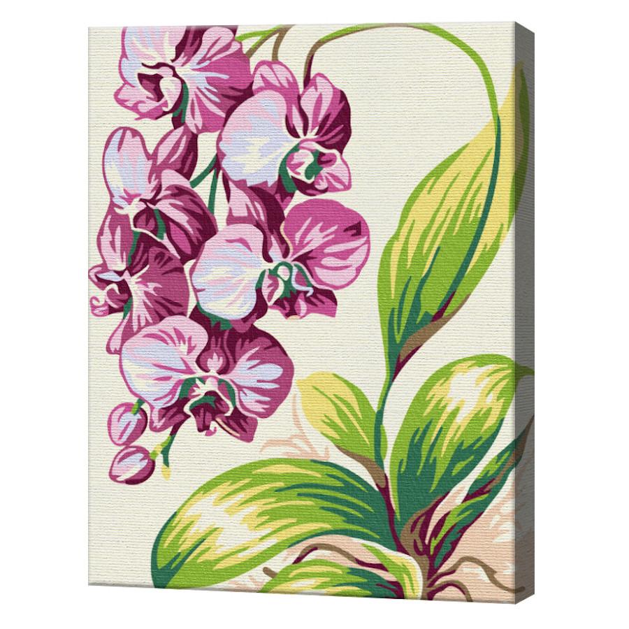 Orhidee mov, 20x30 cm, pictură pe numere