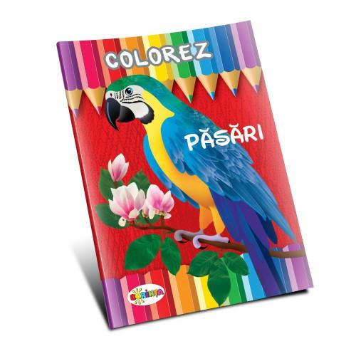 Colorez - Păsări
