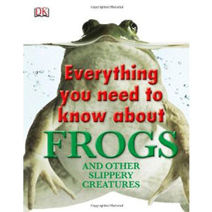 Everything You Need to Know about Frogs