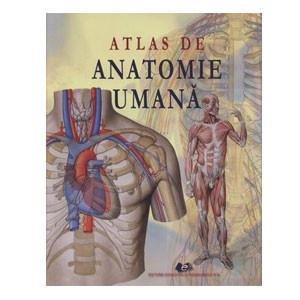 Atlas de Anatomie Umană