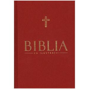 Biblia cu Ilustrații. Vol. 4