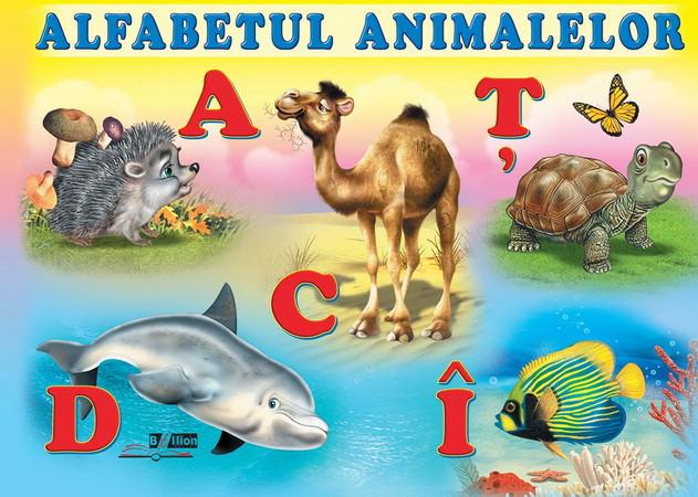 Alfabetul animalelor [Pagini cartonate]