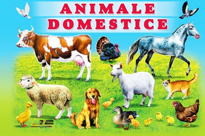 Animale domestice [Pagini cartonate]