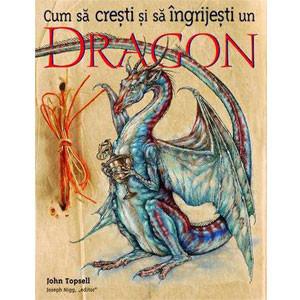 Cum să Crești și să Îngrijești un Dragon