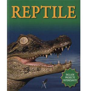 Include proiecte amuzante. Reptile