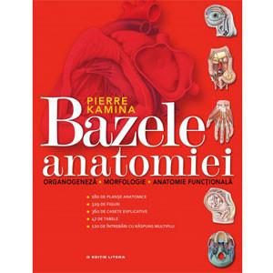 Bazele Anatomiei
