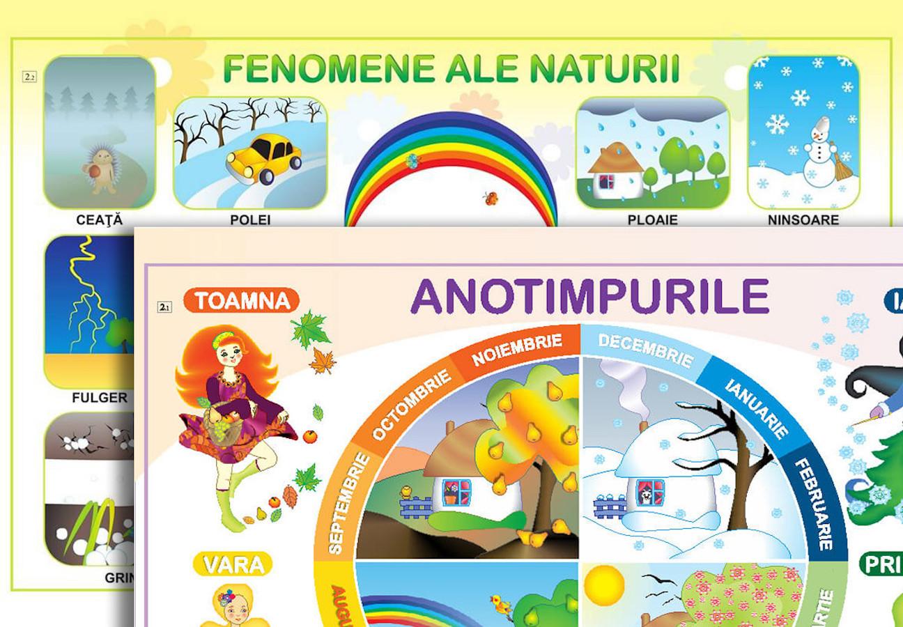 Planșă. Anotimpurile: Caracteristici + Fenomene ale naturii