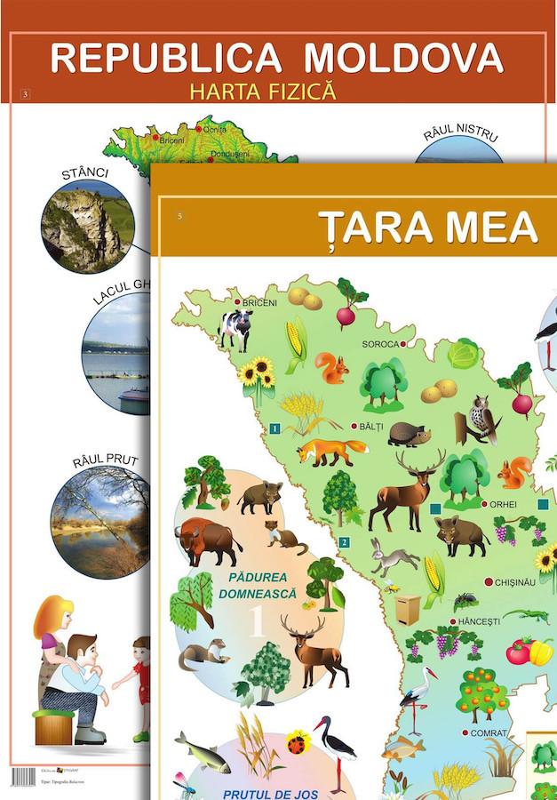 Planșă. Harta fizică a Republicii Moldova – Ţara mea + Hartă cu elemente de peisaj, floră, faună