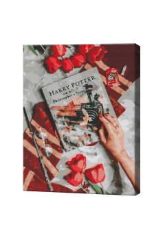 Evadarea în lumea magică lui Harry, 40х50 cm, pictură pe numere