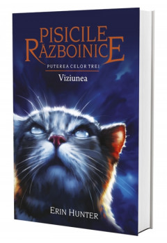 Pisicile Războinice. Viziunea Vol 13