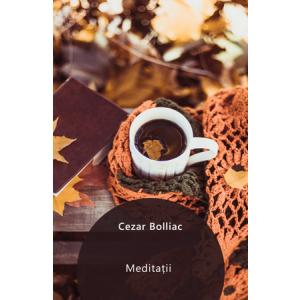 Meditații (versuri) [Carte Electronică]
