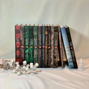 Pachet Promoțional cu 14 cărți din Programul Școlar