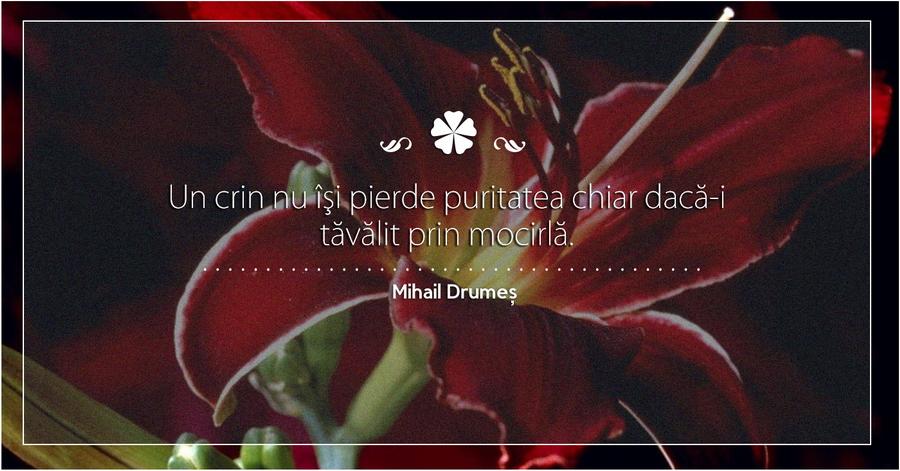 Mihail Drumes citat din Scrisoare de Dragoste